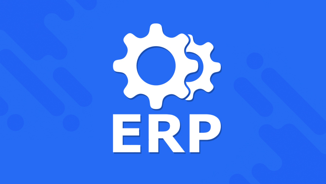 custom erp software developed